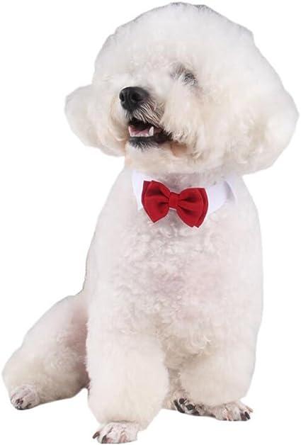 Diyafas 2 x Corbata de Mascota Collar Ajustable de Algod/ón Pajarita Roja Formal Bowknot para Peque/ño Gato Perro Perrito
