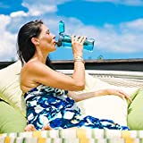 Invigorated Water PH003 Alkaline Water Filter