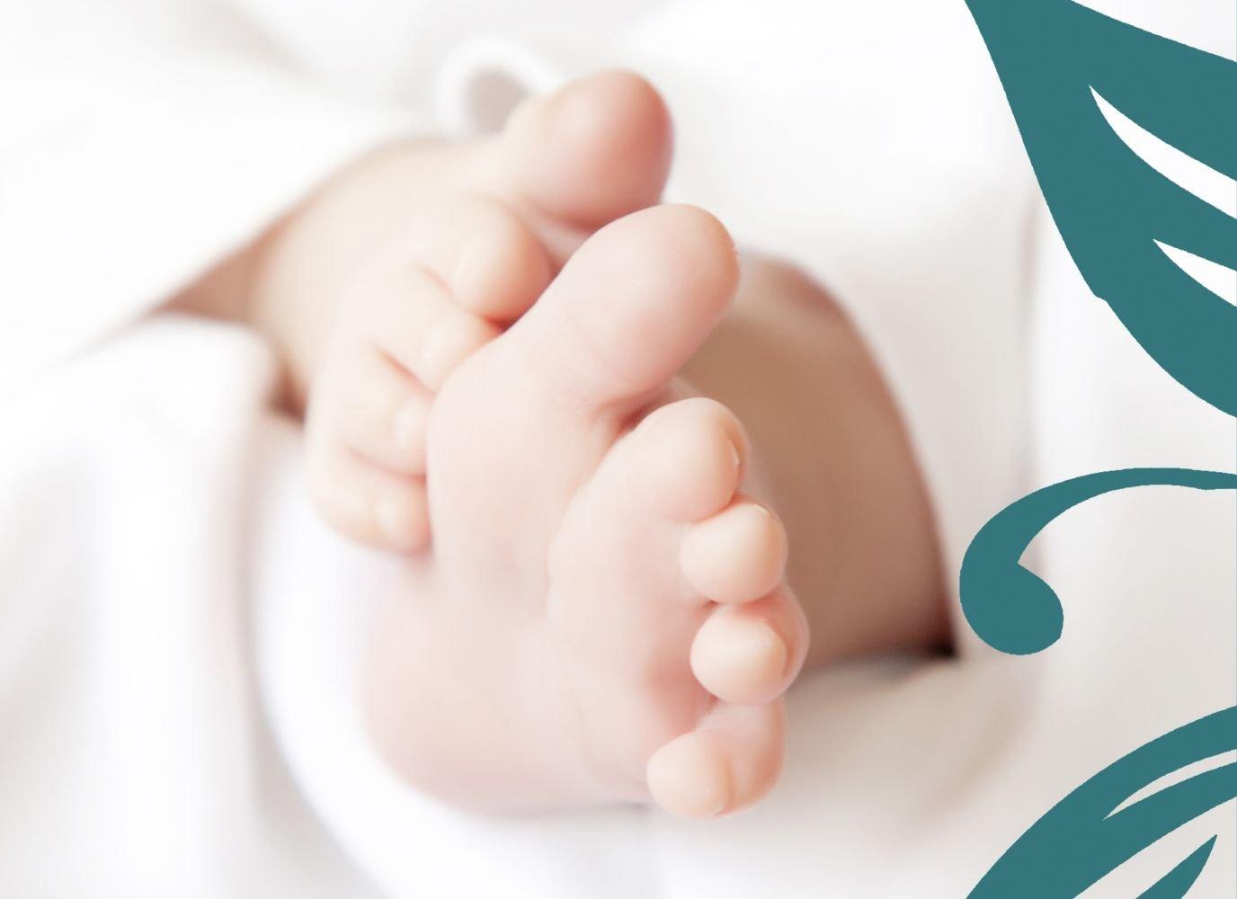 Kartenparadies Geburtskarte Geburtskarte Geburtskarte Babykarte Blaume, hochwertige Babykarte zur Geburt inklusive Umschläge   20 Karten - (Format  148x105 mm) Farbe  DunkelGrün B01MZFPU3L   Ausgezeichnetes Preis    Marke    Luxus  b23cf8