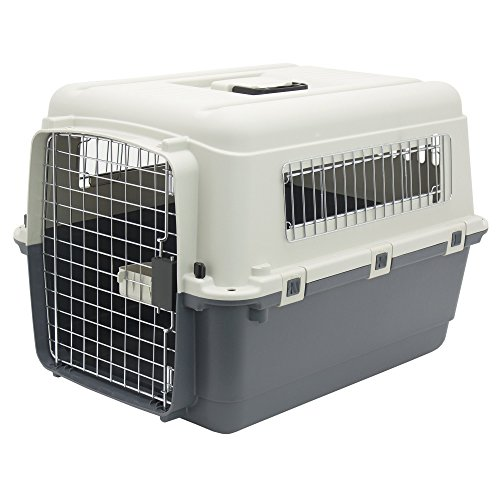 Plastic Kennels - Rolling Plastic Airline Approved Wire Door Travel Dog Crate, Medium