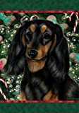 Best of Breed Dachshund (Long Haired, Black and Tan): Indoor/Outdoor House Flag (Holiday Tr.