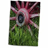 paint your wagon red - 3dRose Danita Delimont - Western - USA, Alaska, Chena Hot Springs. Vintage wagon wheel and grass. - 15x22 Hand Towel (twl_278348_1)