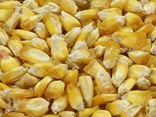 Alyf Market 35 Giant Peruvian Popping Corn Seed-1215