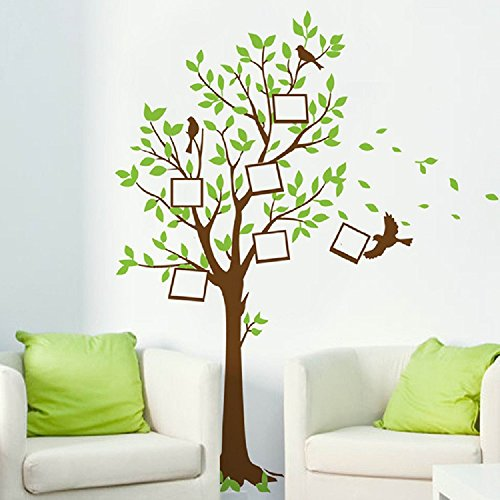 Amaonm Giant Green Leaves Birds Family Photo Frame Tree Wall Decals Huge Family Picture Wall Stciker Murals Peel Stick Kids Bedroom Livingroom Girls Room Playroom Home Art Decor Decorations by Amaonm