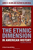 img - for The Ethnic Dimension in American History book / textbook / text book