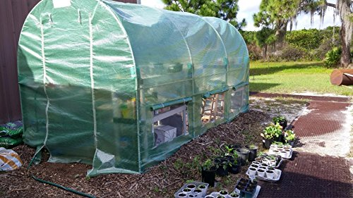 Peaktop 12'x6.5'x'6.5/15'x7'x7'/20'x10'x6' Portable Greenhouse Large Walk-in Green Garden Hot House (Arch Roof, 12'x6.5'x6.5) by Peaktop