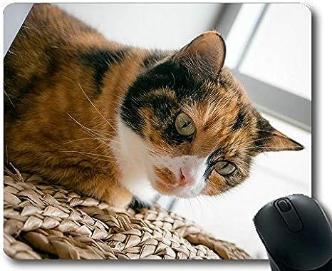 Yanteng Tappetino per mouse da gioco tappetino per mouse Tappetino in gomma antiscivolo per gatti