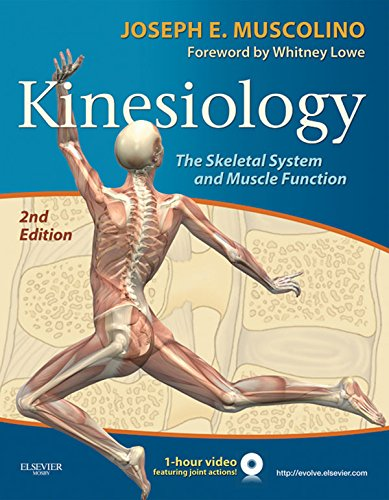 Kinesiology The Skeletal System and Muscle Function (2nd 2014) [Muscolino]