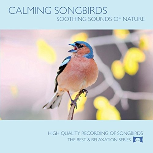 - Calming Songbirds (Soothing Sounds of Nature)