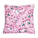 Homier Pink Flamingo Print & Faux Fur Throw Accent Pillow Case Cushion Cover - Luxurious, Beautiful, Fun Prints - Large, 22 x 22 Inches