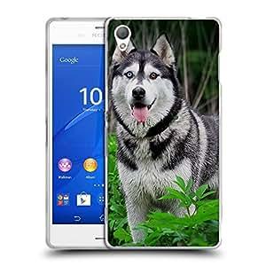 Super Galaxy Coque de Protection TPU Silicone Case pour // V00000803 Patrón del perro de perrito // Sony Xperia Z3 D6603 D6633 D6643 D6653 D6616