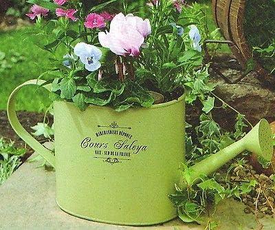 terraza cocina Regadera tradicional estilo franc/és estilo tradicional Macetas de regadera vintage de Ossian jard/ín para plantas de hierbas hogar flores terraza. ventana