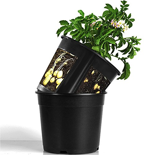 LeJoy Garden Planter Pot 2-Piece Plastic Container for Growing Vegetables: Tomato,Potato,Carrot,Onion,Peanut (Black)