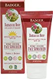 Badger Balm Spf25 Tinted Rose Face Sunscreen Lotion Review and Comparison