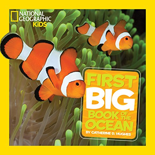 National Geographic Little Kids First Big Book of the Ocean (National Geographic Little Kids First Big Books) (Fish Animal Aquatic)