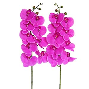 Htmeing 38 Inch Artificial Phalaenopsis Flowers Branches Real Touch (Not Silk) Orchids Flowers for Home Office Wedding Decoration,Pack of 2 (Rose red) 2