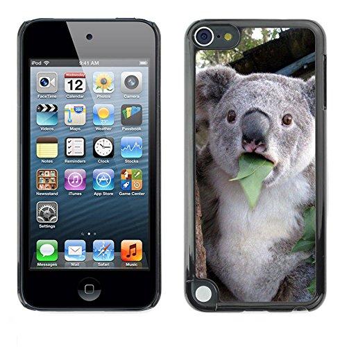 FJCases Koala Animal Slim & Thin Hard Case Cover for Apple iPod Touch 5