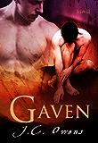 Gaven (English Edition)