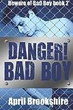 Danger! Bad Boy, April Brookshire, 1499761449