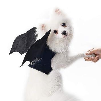 Minions Boutique - Arnés para Mascotas de Halloween, Disfraz de Perro, para Perros y Gatos pequeños: Amazon.es: Productos para mascotas