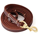 Fairwin Leather Dog Leash 6 Foot - Best Dog Training Leash Heavy Duty for Large Medium Small Dogs (5/8'', Brown)