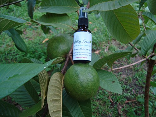 Hair loss treatment - 8 oz - ORGANIC - extracts of guava - No Side Effects - Natural vitamins and minerals stop hair loss & re-grows hair! by Hilltop Guava