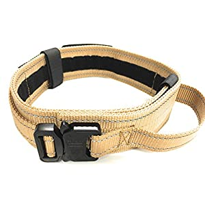 """DOG COLLAR WITH CONTROL HANDLE MILITARY STYLE METAL QUICK RELEASE TACTICAL BUCKLE HEAVY DUTY 2"""" WIDTH NYLON WITH USA FLAG GREAT FOR HANDLING AND TRAINING LARGE CANINE MALE OR FEMALE K9 (Desert Tan)"""