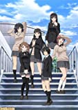 Amagami SS, Season 1 and 2, TV Episodes 1-38, Complete Anime DVD (Japanese with English and Chinese subtitlees)