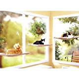 Cat-Window-Perch-Window-Mounted-Cat-Bed-Space-Saving-Cat-Bed-Cat-Hammock-Cat-Resting-seat-safety-mounted-cat-bed-Providing-all-around-360-sunbath-and-for-cats-weighted-up-to-30lb-45lb