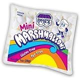 Paskesz Mini Marshmallows 1 Oz. Bag (Pack of 24)