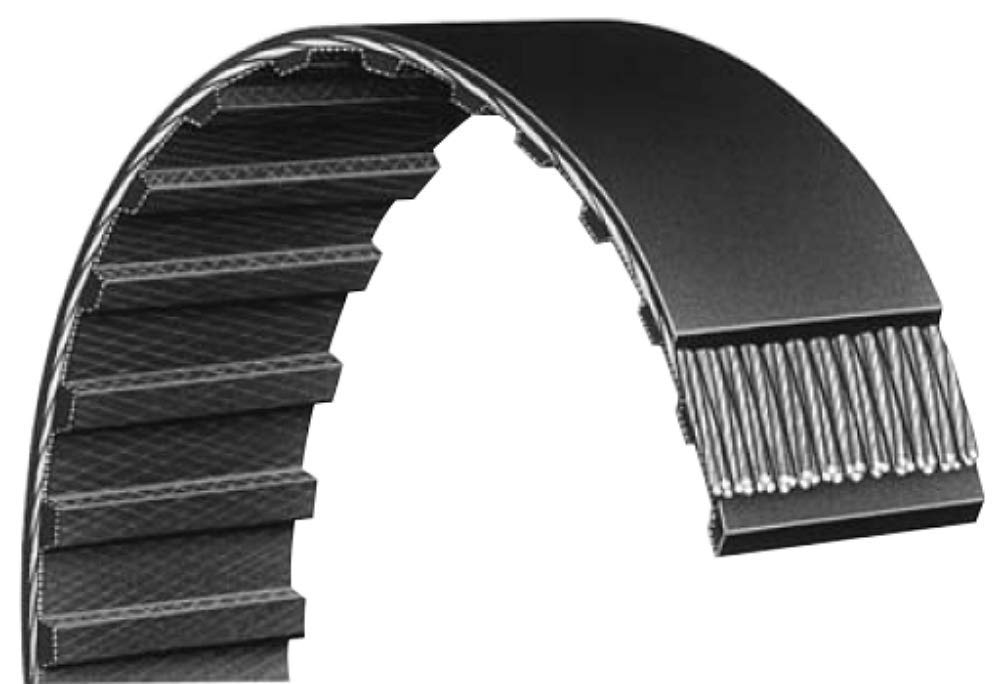 Cinghia DENTATA easybiz per Rexon BD-46 A carta abrasiva questaereo BD46A Timing Belt nastro levigatore 150xl 037