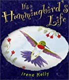 It's a Hummingbird's Life