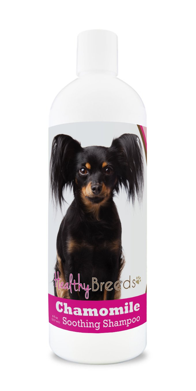 Healthy Breeds Chamomile Dog Shampoo & Conditioner with Oatmeal & Aloe for Russian Toy Terrier - OVER 200 BREEDS - 8 oz - Gentle for Dry Itchy Skin - Safe with Flea and Tick Topicals by Healthy Breeds (Image #1)