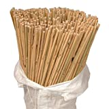 Sandal Stars **5FT** - **50 BAMBOO CANES** High Quality Plant Support (12-14mm) BEST Garden Stakes