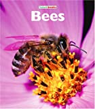 Bees, Mary Ann McDonald, 1567666116