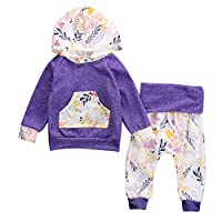 Toddler Baby Girls Floral Hooded Top + Pants Outfits Set Kids Clothes (3-6M, ...