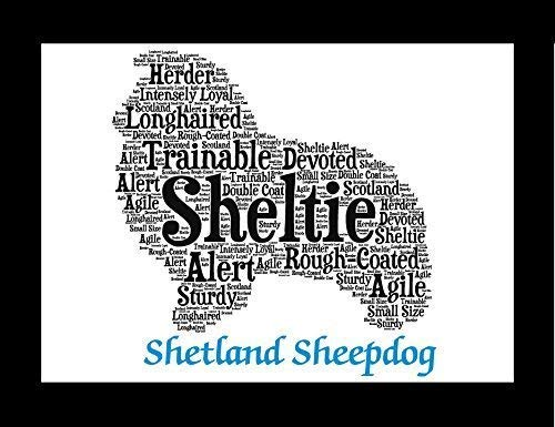 Shetland Sheepdog Dog Wall Art Print - Personalized Pet Name - Gift for Her or Him - 11x14 matted - Ships 1 Day