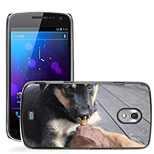 GoGoMobile Slim Protector Hard Shell Cover Case // M00119389 Pup Puppy Mix Breed Pet Dog Friend // Samsung Galaxy Nexus GT-i9250 i9250