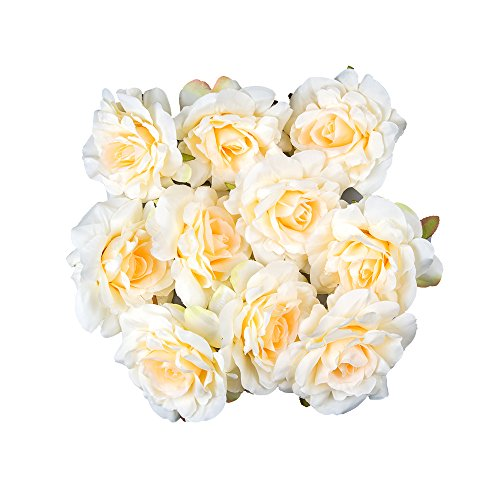 Pack of 25pcs, DinoPure, 10cm Artificial Roses Flower Heads Wedding Decoration Romantic Party, Home, Ceremony, Wedding, Banquet Decor (champane) (Table Ideas Decorating Banquet)