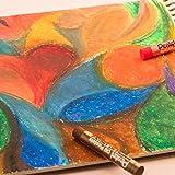 Pentel Arts Oil Pastels, 12 Color Set