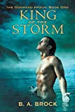 img - for King of the Storm book / textbook / text book