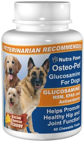 Osteo Pet Glucosamine for Dogs with EFAs and MSM, 60 Chewable Treats (Chewable 60 Treats)