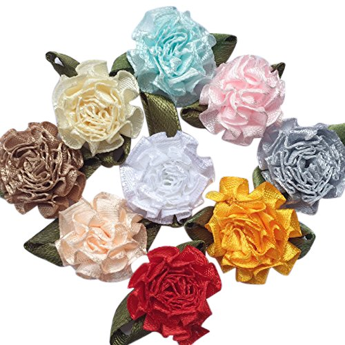 Chenkou Craft 40pcs Ribbon Flowers Bows Carnation Appliques Sewing Craft (Multi)
