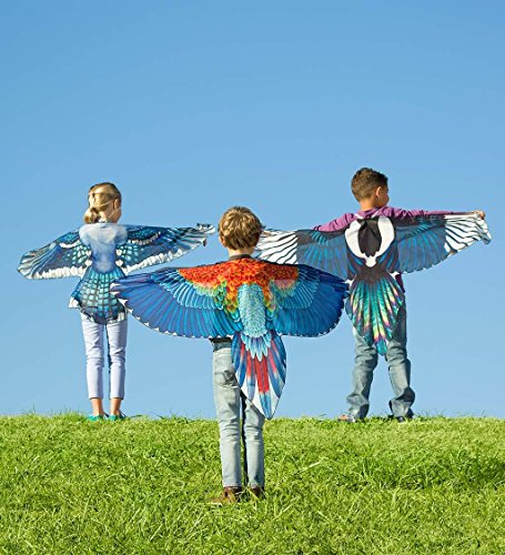 Brainy Bird Wings, Dress Up and Pretend Play Costume for Kids - 52'' Wingspan - Scarlet Macaw by HearthSong (Image #2)