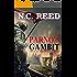 Parno's Gambit: The Black Sheep of Soulan: Book 3