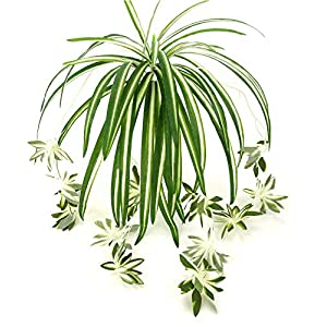 Zivisk Artificial Flowers Spider Plant Fake Greenery - Indoor Outside Home Garden Office Verandah Wedding Decoration - 2PCS 83