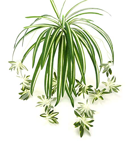 zivisk人工花Spider植物フェイクGreenery – インドア外側ホームガーデンOfficeベランダウェディングデコレーション – 2個 B07CWC6655