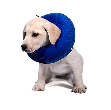 Yontre - Collar Hinchable de recuperación para Perro y Gato ...