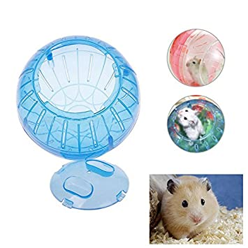 New Small Pet Exercise Cute Ball Hamster Gerbil Toy Running Activity Acessories
