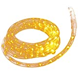 WALCUT 5PACK 10Ft LED Rope Lights, Crystal Clear PVC Tubing Rope Light, Christmas Lighting, Holiday Business Restaurant Light kit, Indoor/Outdoor Rope Lighting, Warm White